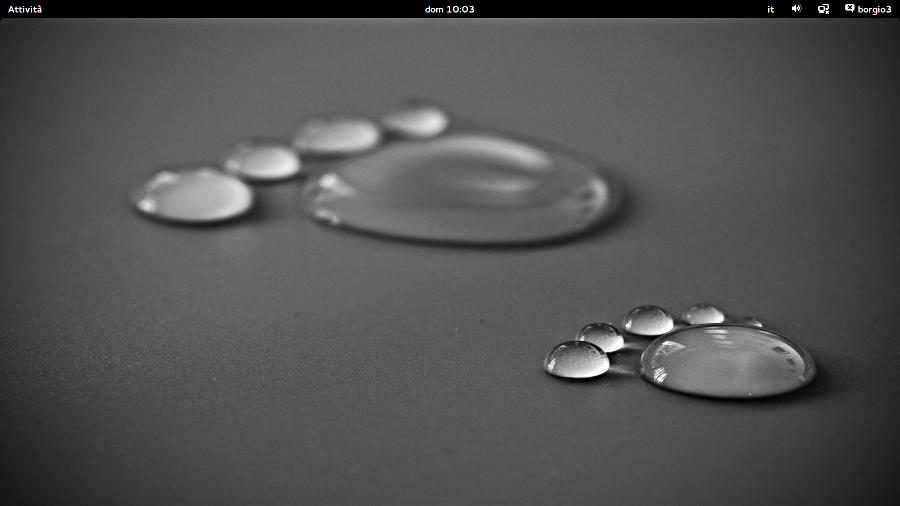 Un mese con Ubuntu Gnome 13.10